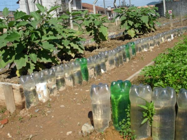 Cómo regar las plantas en vacaciones - Cómo usar una botella para regar las plantas en vacaciones