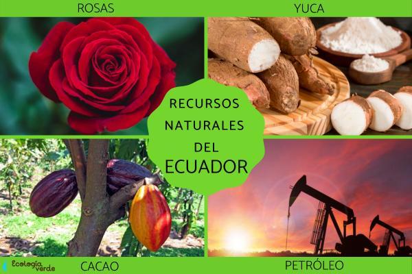 Recursos naturales del Ecuador