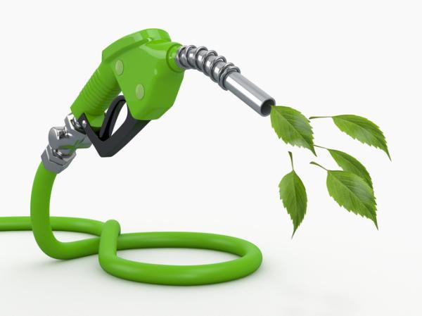 Qué son los empleos verdes - Qué son los empleos verdes