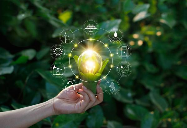 Qué son los empleos verdes - Qué tipos de empleos verdes existen
