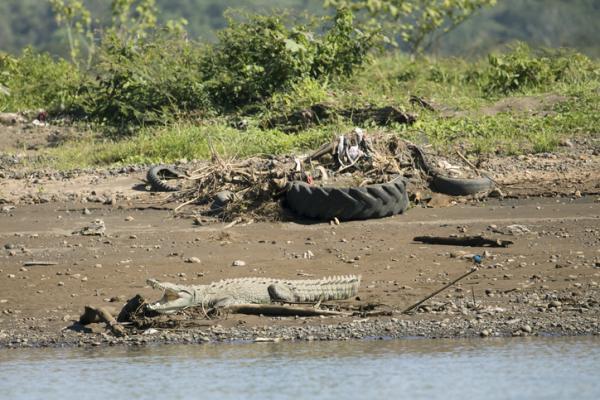 Problemas ambientales en Costa Rica - Gestión y producción de residuos