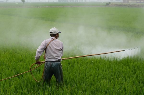 Problemas ambientales en Costa Rica - Uso abundante de agroquímicos