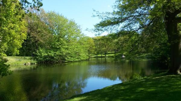 5 razones para disfrutar de la naturaleza todos los días - Tomarse un tiempo para apreciar la belleza de la naturaleza