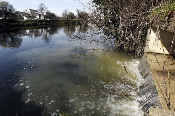 Ríos más contaminados de España - Ríos Miño y su afluente Barbaña