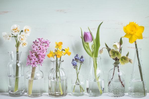 Cómo reciclar vidrio - Ideas para reciclar botellas de vidrio