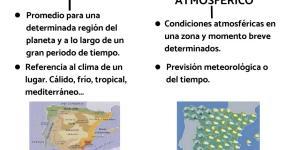 Diferencia Entre Organismos Autótrofos Y Heterótrofos Con Ejemplos