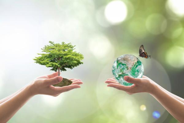 Conservación de la biodiversidad: qué es, prácticas e importancia - Prácticas para la conservación de la biodiversidad