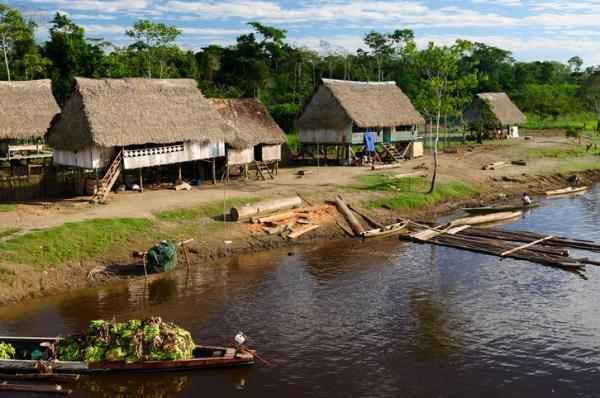 Cómo viven las tribus del Amazonas - Amenazas y problemas a los que se enfrentan las tribus del Amazonas