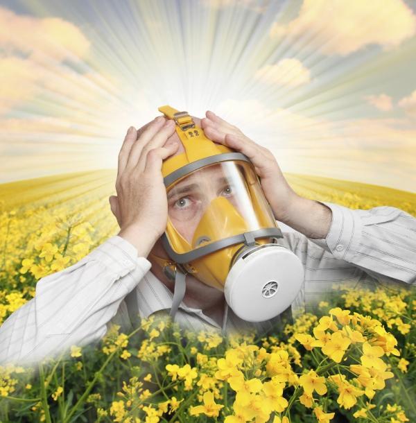 Tipos de flores comestibles - ¡Cuidado con las alergias!