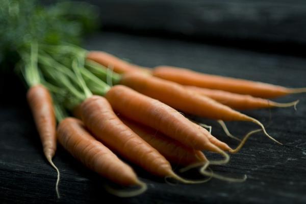 Sembrar zanahorias: cómo y cuándo hacerlo - Cuándo sembrar zanahorias