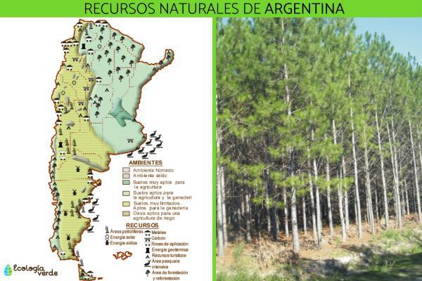 Recursos naturales en Argentina