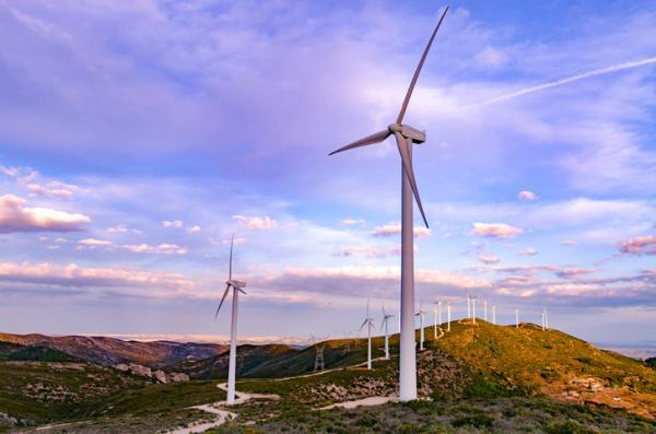 Recursos naturales en Argentina - Recursos naturales renovables