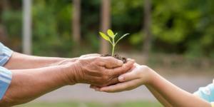 El planeta y su lucha contra el hombre: proyectos de ecología para salvar el medio ambiente (y nuestro futuro)