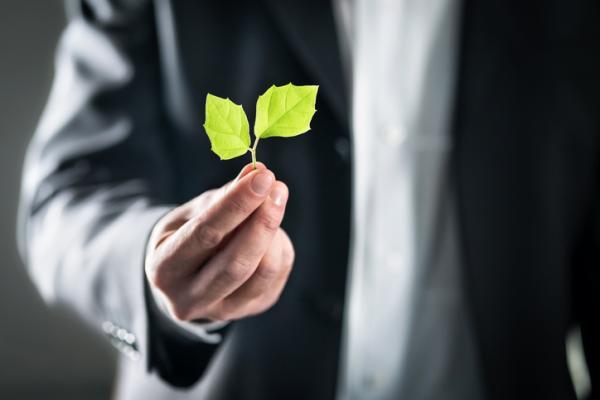 Qué es el Derecho Ambiental - Qué es el Derecho Ambiental - definición sencilla