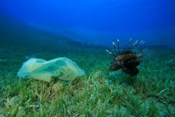 Los residuos más contaminantes y difíciles de separar del agua - Compuestos orgánicos