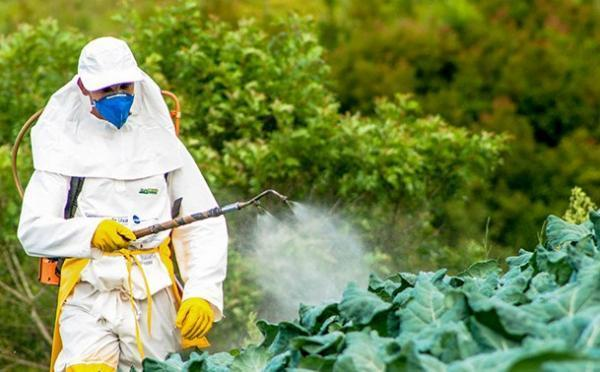 Los residuos más contaminantes y difíciles de separar del agua - Insecticidas y otros pesticidas, grandes contaminantes del agua