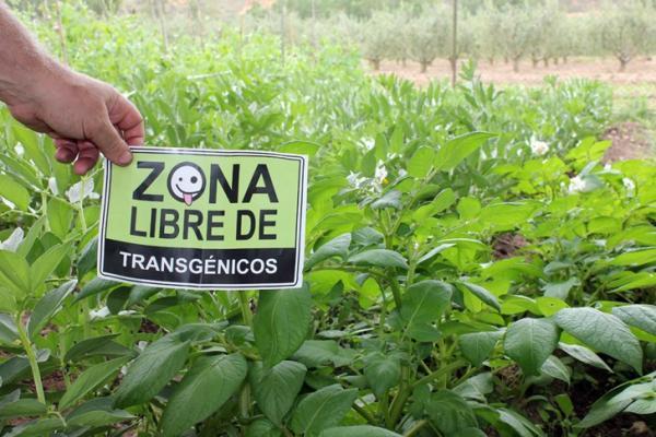 Qué es la agricultura orgánica - Qué ventajas tiene la agricultura orgánica
