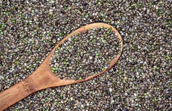 Propiedades nutritivas de las semillas de cáñamo