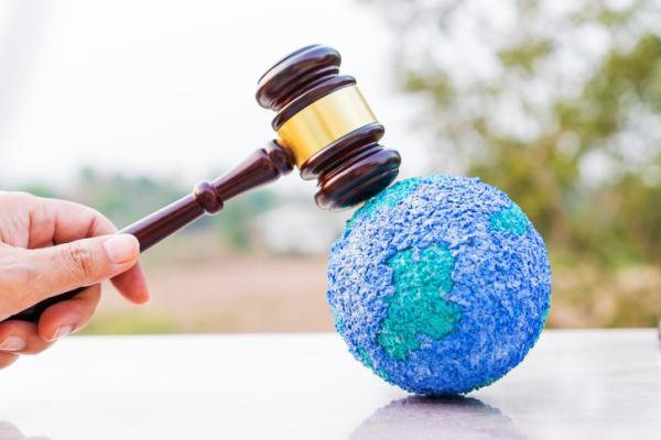 Cuáles son los delitos contra el medio ambiente con ejemplos