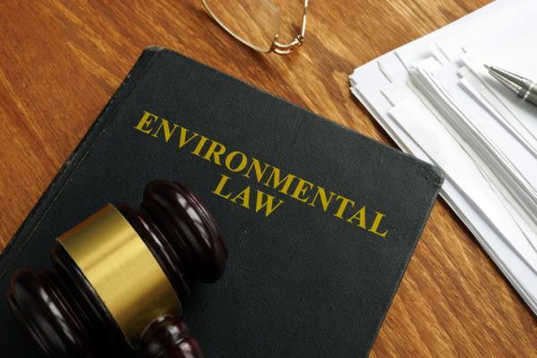 Cuáles son los delitos contra el medio ambiente con ejemplos - La Corte Penal Internacional