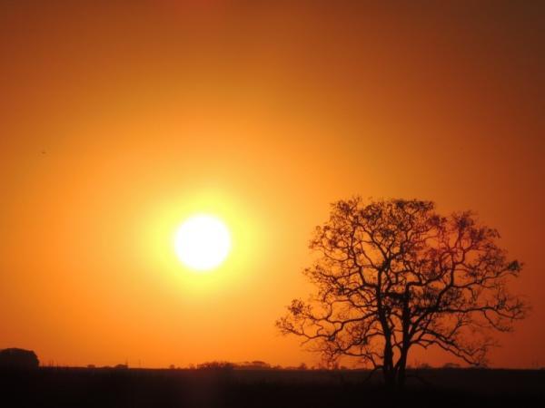 Por qué el Sol es amarillo: explicación para niños - Por qué vemos el Sol de color amarillo: explicación sencilla