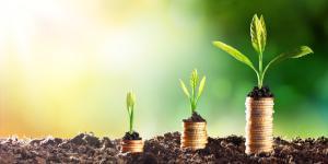 Qué es salud ambiental: definición y ejemplos