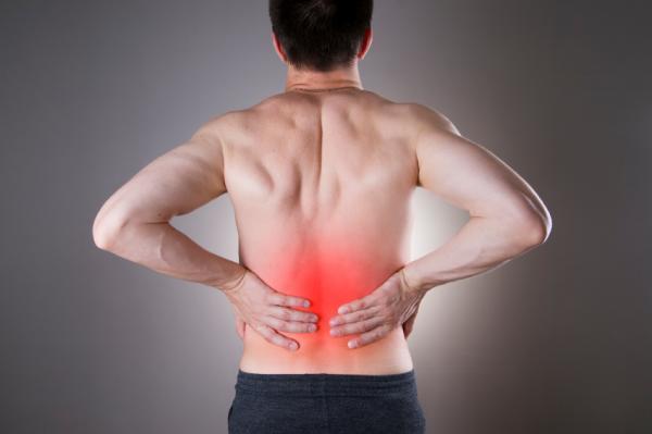 Qué es la biodescodificación de las enfermedades y qué significa cada una - Biodescodificación del dolor de espalda