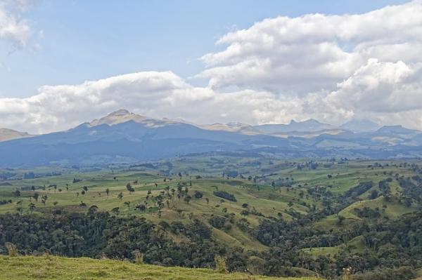 Cuáles son los ecosistemas de Colombia