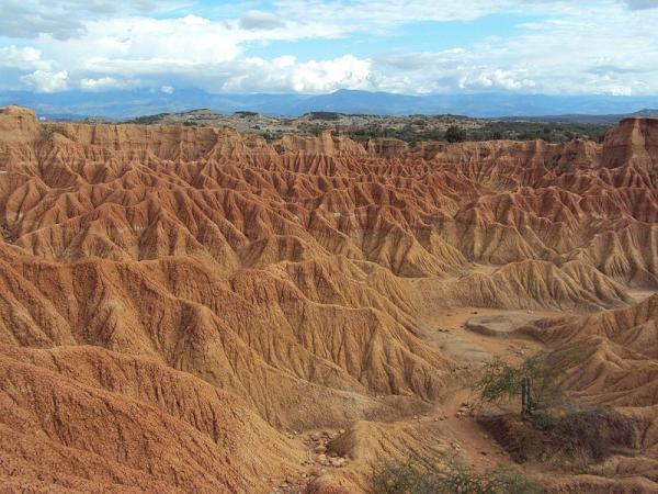 Cuáles son los ecosistemas de Colombia - Ecosistemas terrestres de Colombia