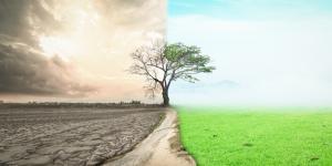 Problemas medioambientales y soluciones