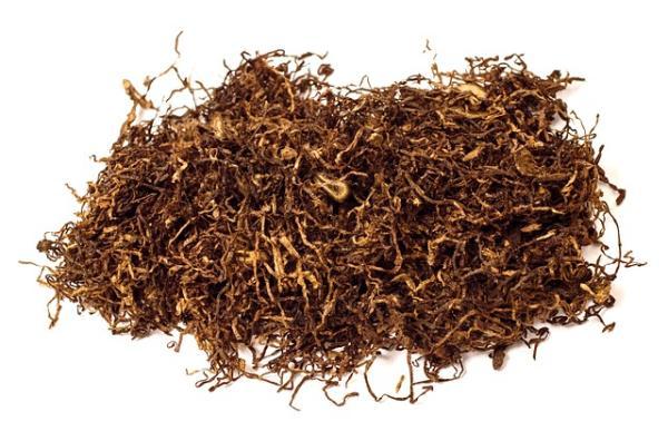 Cómo hacer insecticidas naturales para plantas - Insecticidas caseros con tabaco