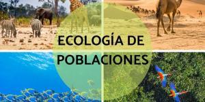 Qué es la ecología de poblaciones o demoecología