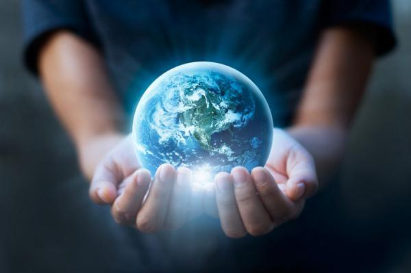Qué es ecologismo y su diferencia con la ecología
