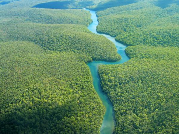Por qué el agua de los ríos es dulce