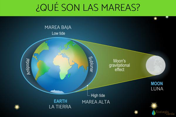 Qué son las mareas y por qué se producen