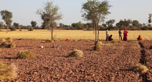 Qué es la agroecología y su importancia - Cuál es la importancia de la agroecología
