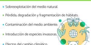 Cuáles son los factores que afectan a la biodiversidad