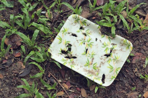 Cuánto tarda en degradarse el plástico biodegradable