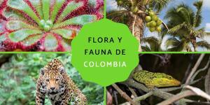Flora y fauna de Colombia