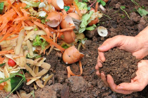 Abono orgánico: qué es, tipos, beneficios y cómo hacerlo - Tipos de abono orgánico