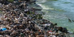 Principales problemas ambientales en Venezuela