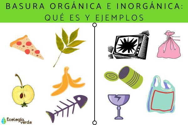 Basura orgánica e inorgánica: qué es y ejemplos