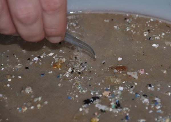Qué son los microplásticos: definición y tipos - Qué son los microplásticos - definición sencilla