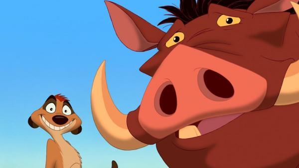 Qué animales son Timón y Pumba