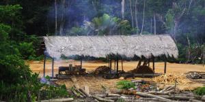 Deforestación del Amazonas: causas y consecuencias