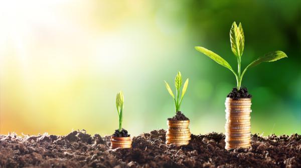 Diferencia entre desarrollo sostenible y sustentable - Qué es desarrollo sostenible