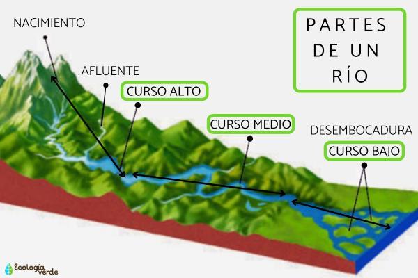 Partes del río y sus características - Partes de los ríos