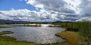 Aguas continentales: qué son, características e importancia