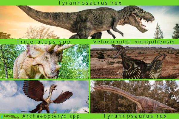 Cuántas especies de dinosaurios existieron - Cuáles son los dinosaurios más importantes