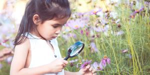 20 curiosidades científicas sobre el medio ambiente